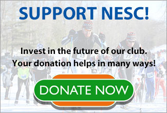 Donate and Support NESC